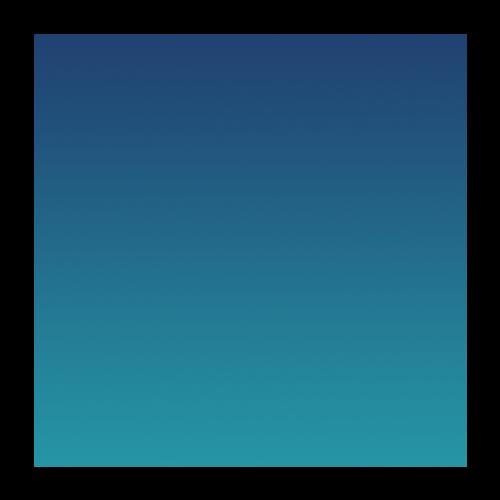 int icon 2